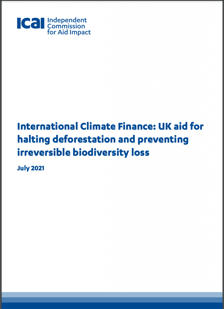 Front cover of ICAI report on deforestation and biodiversity